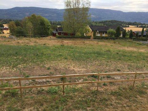 FÅR IKKE VANNE: Her skulle Wenche Bergseth gjerne vannet, slik at gresset vokste så de to hestene hennes kunne beite her.