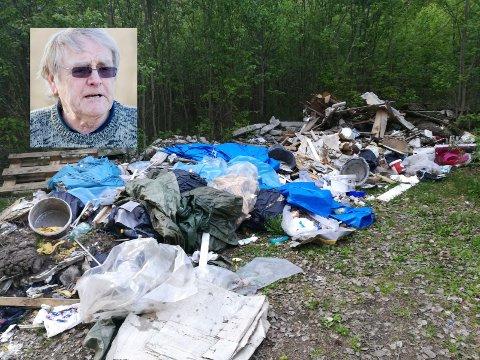 MILJØSVINERI: - Miljøsvineri, sier Oddvar Røysi om søppeldumpingen på hans eiendom.
