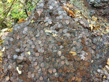 GAMLE MYNTER: Det kan være snakk om opp mot flere tonn mynt som denne uken ble funnet i skogen utenfor Kongsberg i Buskerud. Foto: Det Norske Myntverket