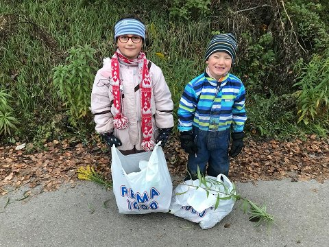 Ina og Anton på søppel-tur på Haldenjordet