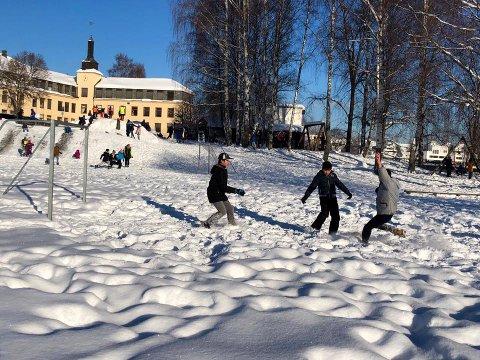 STORT OMRÅDE: Hønefoss skole og Glatved har 11,4 mål tomt hvor barna kan boltre seg.