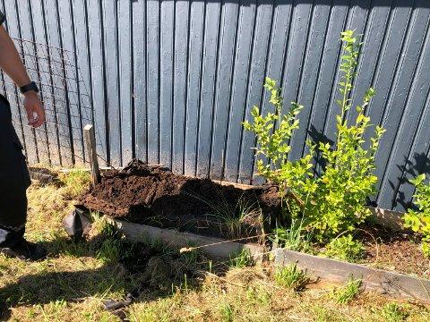 ULMEBRANN: Det begynte å brenne i en blomsterkasse som sto inntil en garasje i Ludvig Grønvolds vei i Hønefoss.