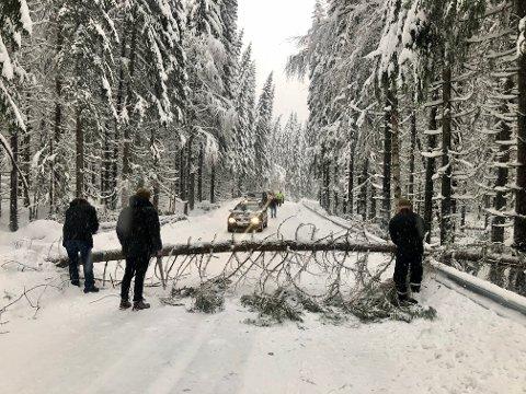 TRÆR OVER VEGEN: Her tar bilistene saken i egne hender for å komme seg fram på omkjøringsvegen over Skjerva.