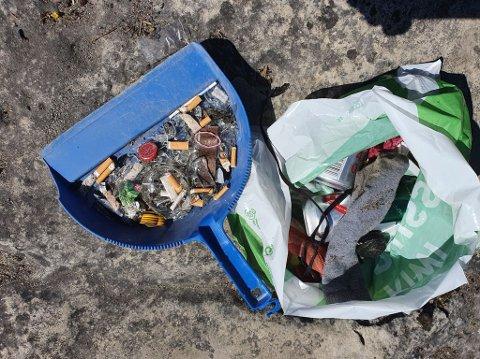 SØPPEL: Naboer i Nedre Steinsåsen ryddet søndag morgen opp etter festligheter på den populære stranda ved Steinsfjorden.