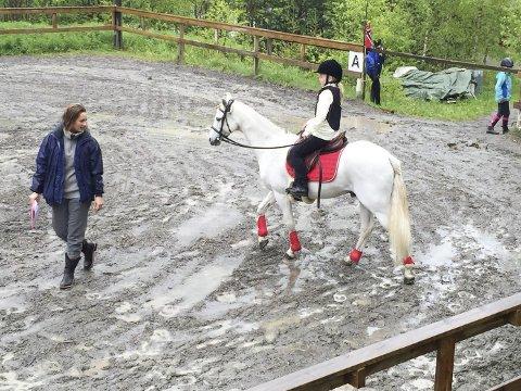 Fôrkrisa: Rjukan Rideklubb søker kommunen om tilskudd til vinterfor, men kultursjefen setter foten ned. (arkiv RA)