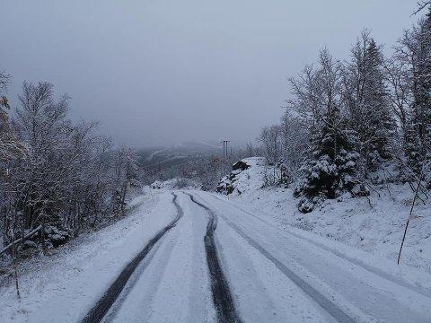 VINTEREN ER HER: Snøen ligger ti centimeter tjukk i veien over til Tuddal