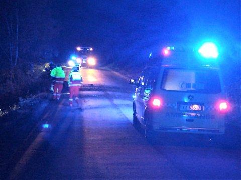 RASFARLIG: Et stort ras gikk på Svadde nylig. Stein fra raset ligger i veibanen og veien er stengt.