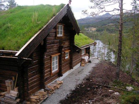 FIKSTJØNN 2: Det nye hyttefeltet vil komme med en tilknytning til det eksisterende hyttefeltet ved Fikstjønn