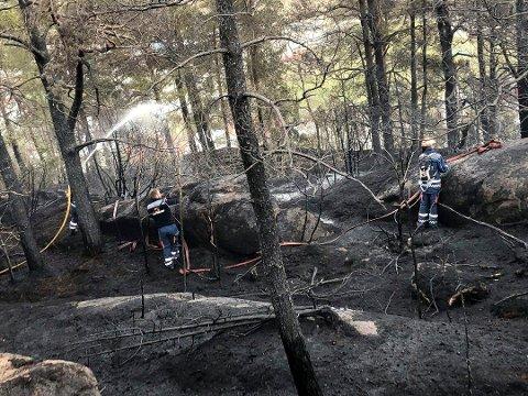 FARE:Brannsjefen ønsker ingen reprise på skogbrann-sommeren 2018. Da brant det mange  steder i Sør-Norge. (foto Sivilforsvaret)