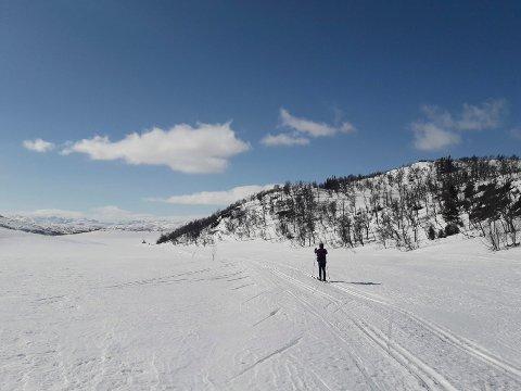 FJELLVETT: Strålende sol over fjellområdene  i Tinn skjærtorsdag.  Noen tinndøler benyttet muligheten til å ta en skitur i finværet - som her ved Grasfjell i nærheten av Skinnarbu.