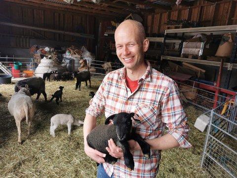 FIN ULL: Grå trøndersau gir veldig fin ull. Hans Torsvik Ørnes holder her et fem dager gammelt lam.
