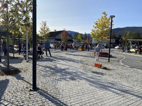 AUSTBYGDE: Lørdag er det klart for en av årets største høydepunkter i Tinn - Haustmarknad i Austbygde.