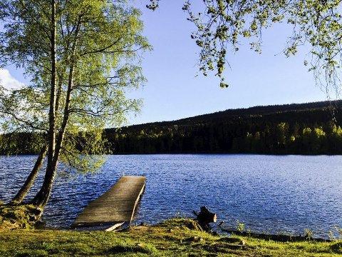 MANGE MULIGHETER: Sognsvann eller et lokalt vann kan være utgangspunkt for mange aktiviteter. FOTO: PRIVAT