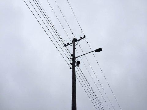 I toppen av masta ligger en måke som kortslutter strømmen.