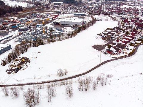 Søppeldeponi: Nedlagte Brånåsen avfallsdeponi på Holt Vestvollen er under kartlegging.