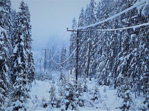 STRØMBRUDD: Tisrdag morgen er det fortsatt flere strømbrudd på Romerike., grunnet tung snø på linjene.