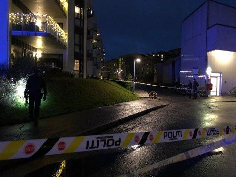På vei til jobb ble en forbipasserende stanset på dette fortauet på Åråsen halv åtte tirsdag morgen. På norsk sa den skadde: Ring politiet!