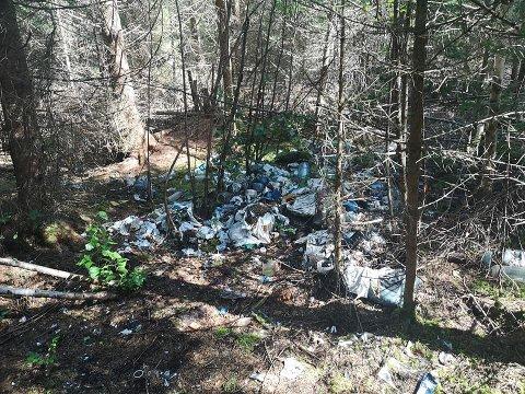 SØPPELBERG: Det populære turområdet i Sørumsand er fullt av søppel, bare noen titalls meter bortenfor turstiene.