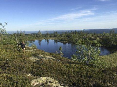 BYTT UT SHORTSEN: I sommer kunne man fint besøke Marifjell naturreservat i Nannestad med bare shorts, men skal du på tur i helgen bør du kle deg bedre.