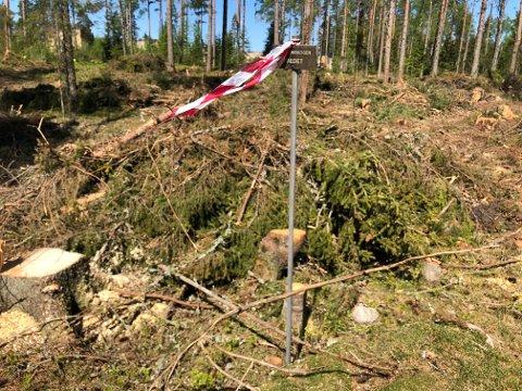 Hvor mye som skulle hogges og hvordan ble muntlig avklart mellom skogsforvalteren i Forsvarsbygg og entreprenøren. Alle grantrærne og noen furuer i den fredede skogen ble hogd med skogsmaskin.