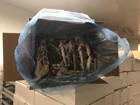 BESLAG: Politiet tok beslag i 1,6 tonn med kongekrabbe på et lager i Tana i Finnmark. Krabbene skulle etter planen transporteres til Romerike. Foto: Politiet