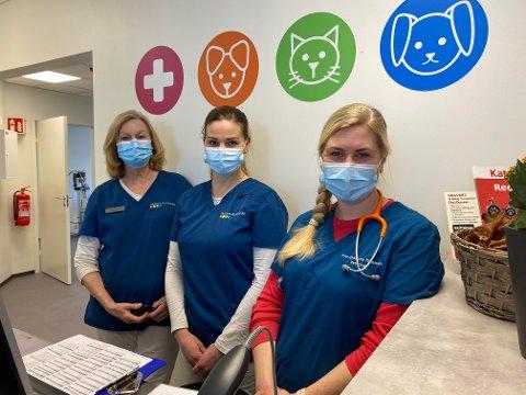 SPENNENDE ENDRINGER: De ansatte er svært positive til den nye klinikken. tv. Tove Kjæreng, Therese Rekkset og Ann-Charlotte Kittelsen.