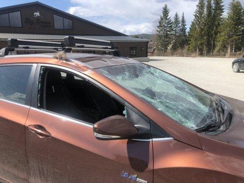 Slik så bilen ut etter elgpåkjørselen på Bjørkelangen søndag formiddag.