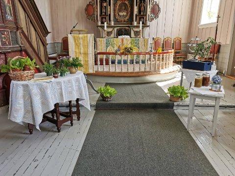 Skaperverkets dag i Holter kirke