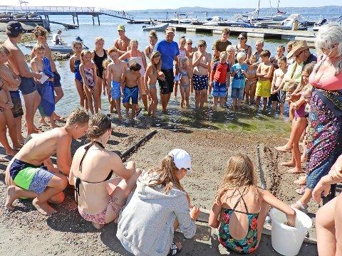 """KLAR FOR DYST: Det er ikke barna, men """"veddeløps-krabbene"""" som skal konkurrere etter nøye utvelgelse."""