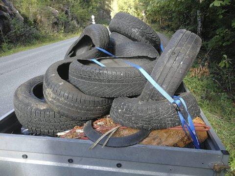 FYLTE HENGEREN: Tove og Ole Trygve Solberg har egenhendig ryddet søppel under RV23-broa på Storsand. Foto: Innsendt