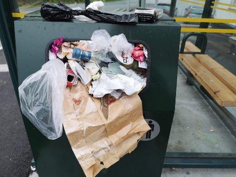 I KRYSSET: Viva har tatt på seg ansvaret for å tømme søpla ved bussholdeplassen som ligger i overgangen  mellom kommunal og fylkesvei.