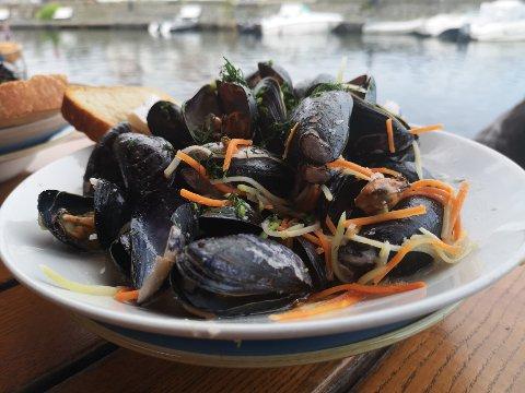 IKKE PLUKK DEM SJÆL:Blåskjell langs kysten av indre Olsofjord er ikke spiselige i sommer, men du kan trygt kjøpe dmei butikken.