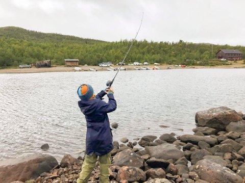 BEDRE FORHOLD: Pengene fra Sparebankstiftelsen skal NJFF bruke til å bedre gyte- og oppvekstforholdene for sjøørret i Oslofjorden.