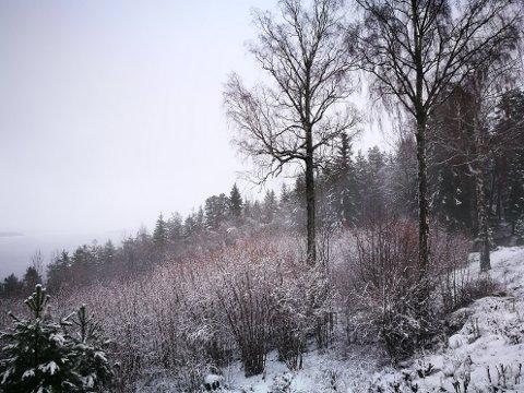 PÅ MINUSSIDEN: På nyttårsaften og i starten av helgen vil temperaturen være på minussiden, og noe nedbør kan komme som et lett snødryss.