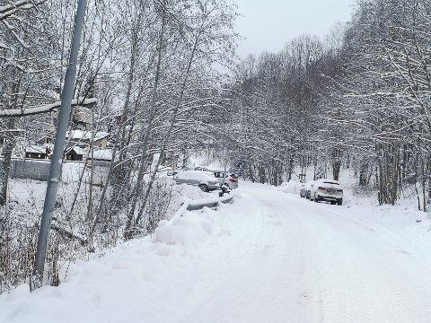 BER OM HJELP: Velforeningen i Godheimveien i Røyken ber kommunen om hjelp.