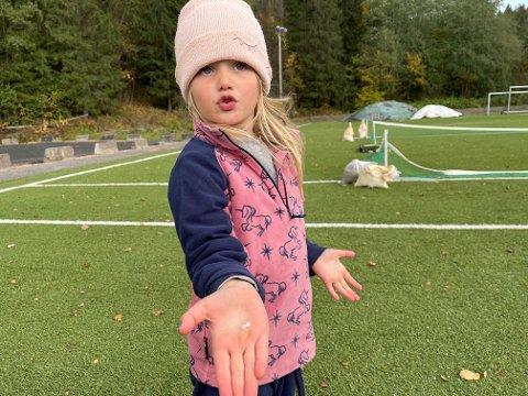 HAGL: Det faller is ned fra himmelen! roper Milea og viser frem et hagl hun har plukket opp.