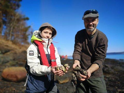 SELVPLUKK: Ole Kvisgaard Karlsen (13) og pappa Jan Kristian Karlsen gleder seg over å kunne samles på stranden med selvplukkede blåskjell og østers.