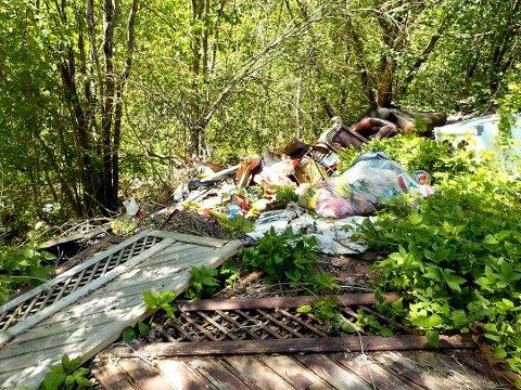 VILLFYLLING: Søppel som kastes langs veien på øde områder er et økende problem i Vestfold. Dette bildet ble tatt ved Hanekleiva i Hillestad i fjor.