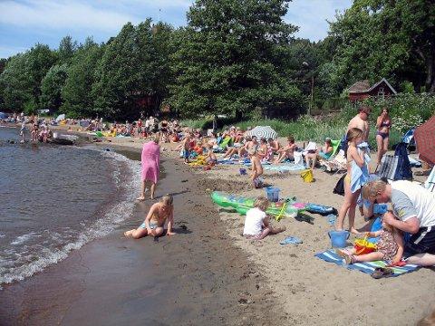 """Sandvik i Sande fikk karakteren """"Mindre god"""". Det mener Miljørettet helsevern skyldtes en stor mengde måker som var på stranda da prøvene ble tatt."""
