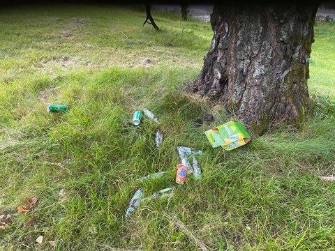 SØPPEL: Ungdommene etterlot seg søppel i parken.