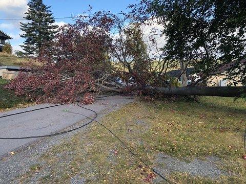 GIKK OVERENDE: Tre gikk tapt mot vinden torsdag ettermiddag, men fredag formiddag var det fortsatt ikke fjernet.