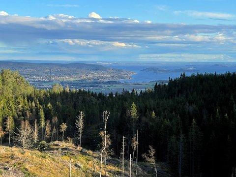 UTSIKT:  Like ved Kalmosetra finner du et flott utkikkspunkt over Sandebukta.