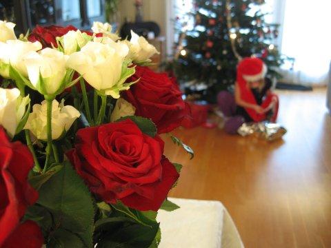 ALLERGIVENNLIG JUL: Det er flere ting du kan gjøre for å få julestemning i huset uten at det går hardt utover allergikere og astmatikere.