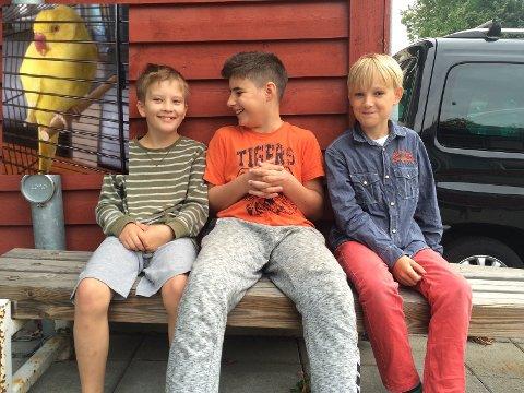 Gabriel (10), Verlind (11), og Emil (10), tilbrakte friminuttet med å prøve å fange fuglen som hadde forvillet seg inn i skolegården.
