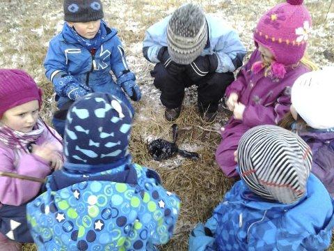 Barnehager: Det finnes ingen forskning som sier at store grupper med lav voksentetthet er bra for barna! Ingen! Men vi har nå mye forskning som viser det motsatte, skriver Wiborg og Mythe.