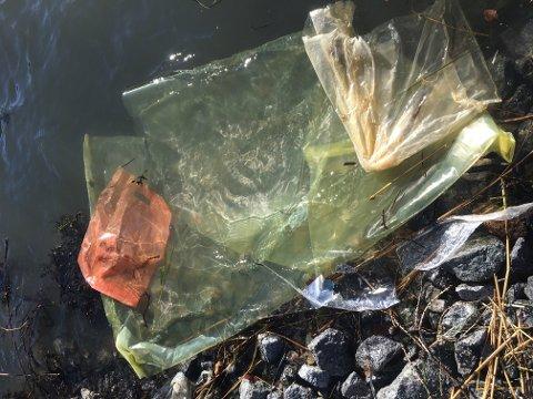 DYR DØR: Dyr i havet dør fordi de spiser eller sitter fast i plastavfall. Her er et eksempel på plast som flyter i land i Sandefjord.