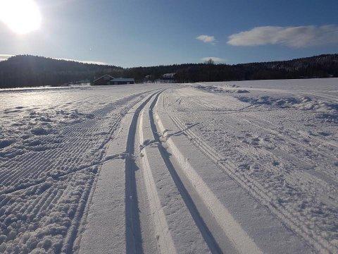 RE-LØYPENE: I Re og Våle ble det kjørt rundt 40 kilometer skispor på fredag. Løypene går både over jorder og i skogen.