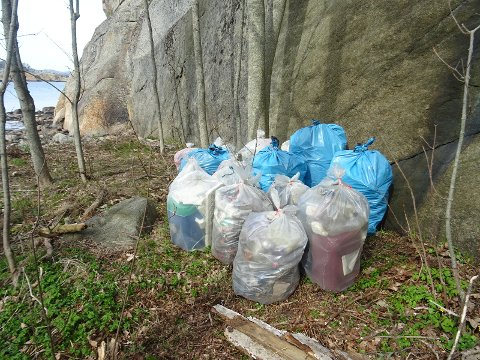 Etter 5-6 timers innsats ble det 16 sekker med søppel, som Skjærgårdstjenesten fikk fjernet.