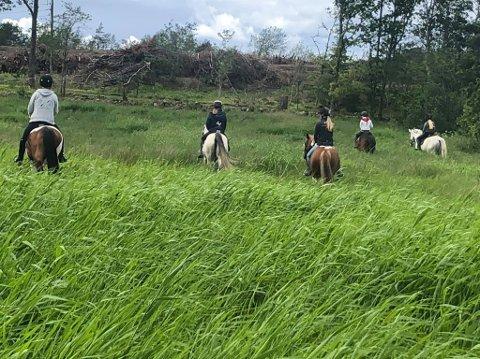 PÅ UTKIKK: Ryttere fra Sørbyøya Hestesenter redder rådyrkalver fra hesteryggen.