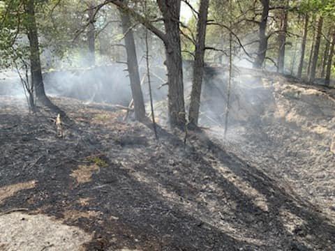 SKOGBRANN: På nasjonaldagen rykket Sandefjord brann og redning til en kratt-/skogbrann på Flatås i Stokke. Brannen var rundt 300 kvadratmeter på en topp og 2 kilometer unna nærmeste vannkilde.